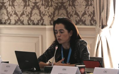 Presentation by C. Tsigou at the 19th General Assembly of the Mediterranean Network of Regulatory Authorities